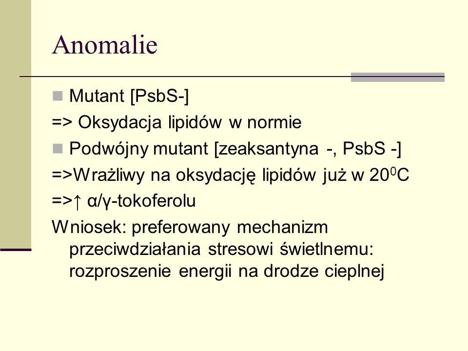 Anomalie Mutant [PsbS-] => Oksydacja lipidów w normie